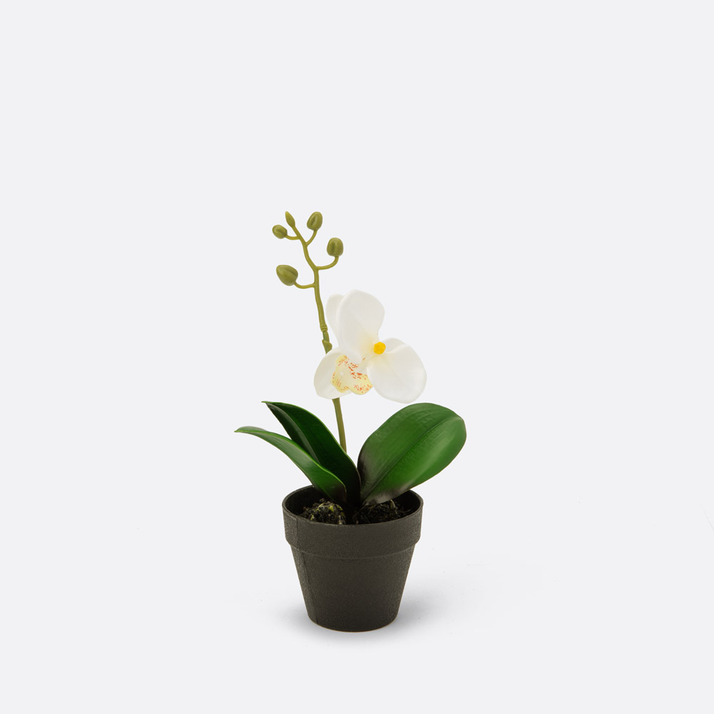 Planta artificial BLAU