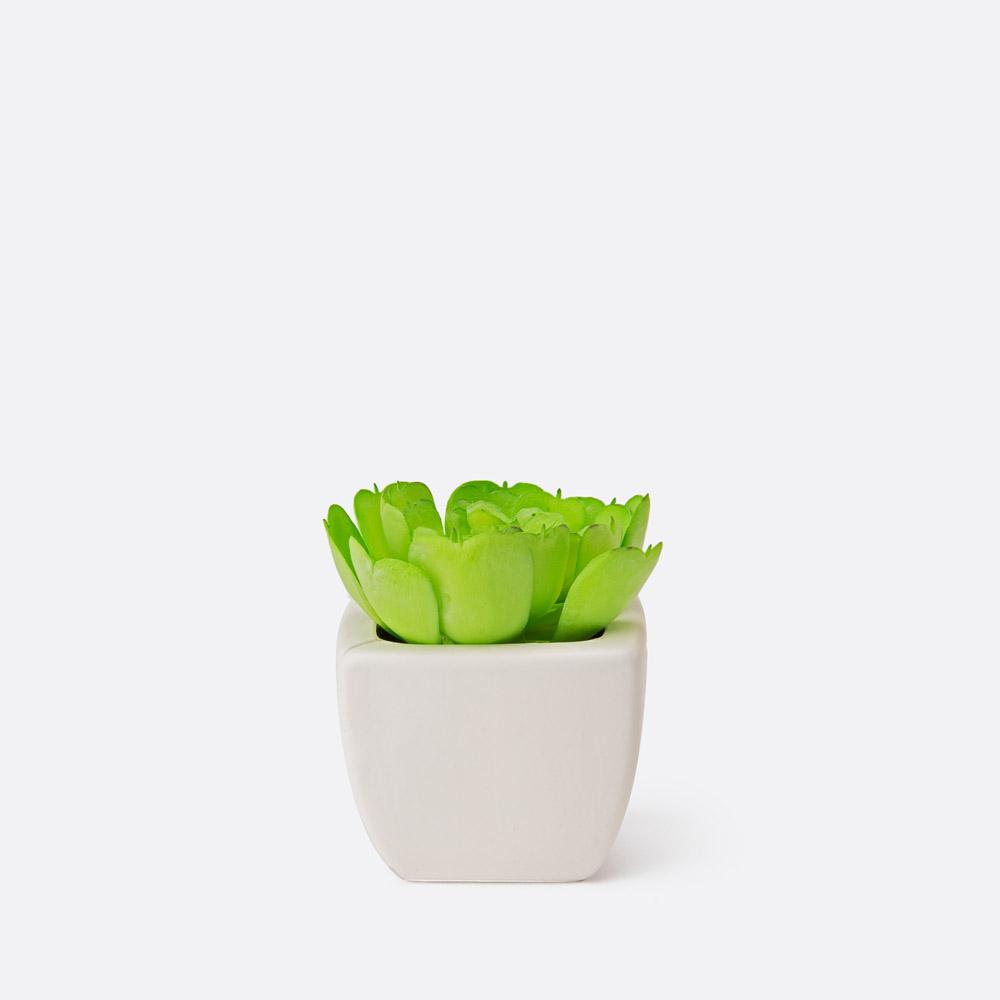 Planta artificial TEIDE