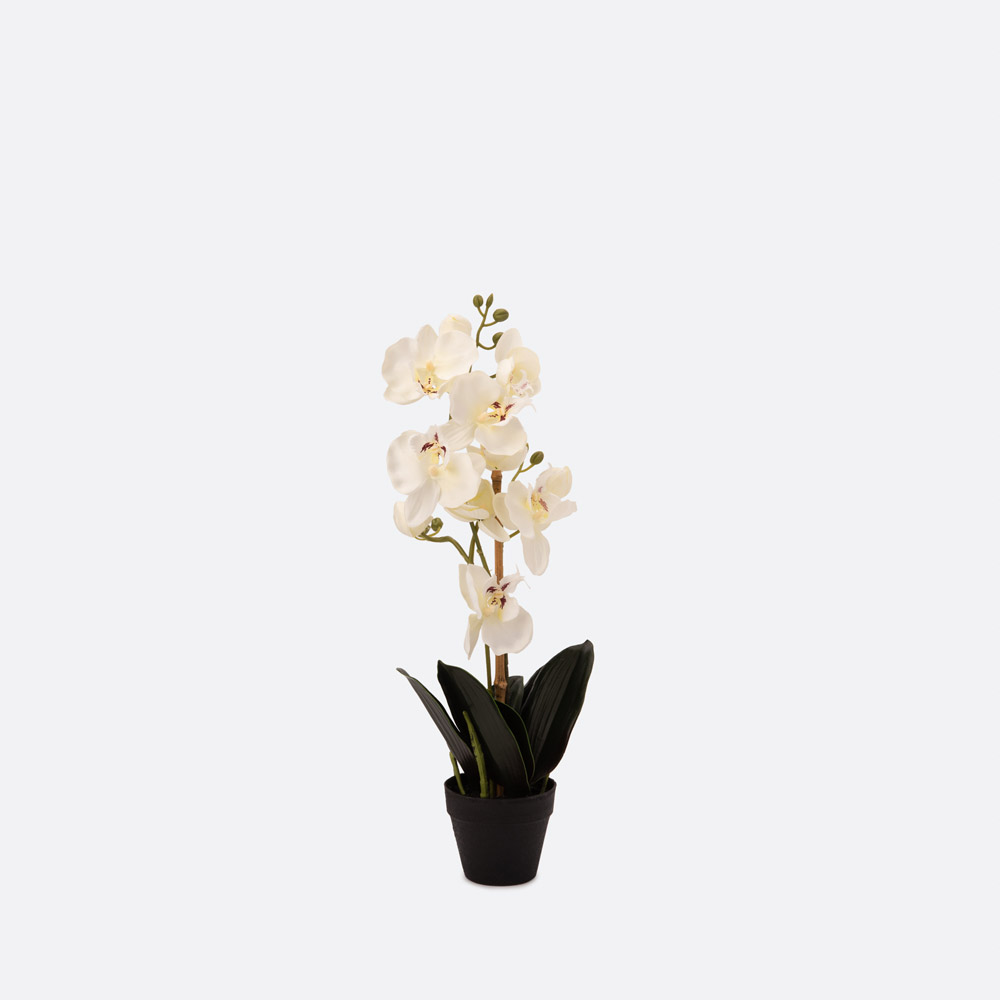 Planta artificial ORCHID