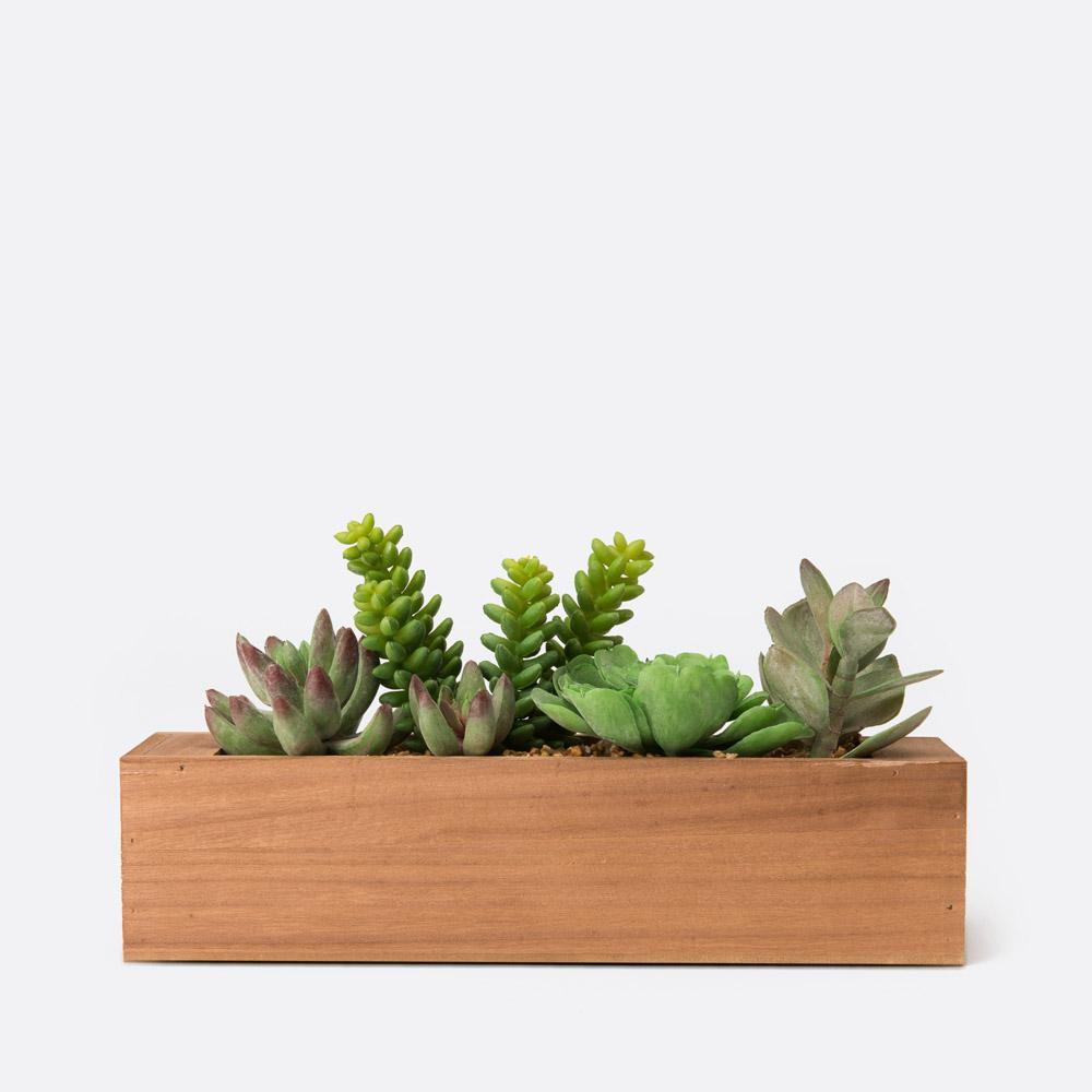 Planta artificial GIUSEPPA
