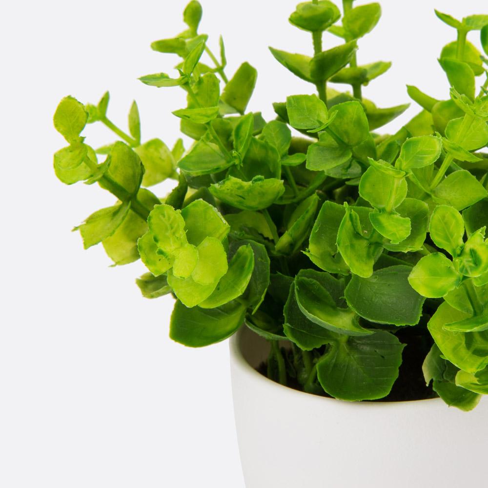 Planta artificial ARICINA
