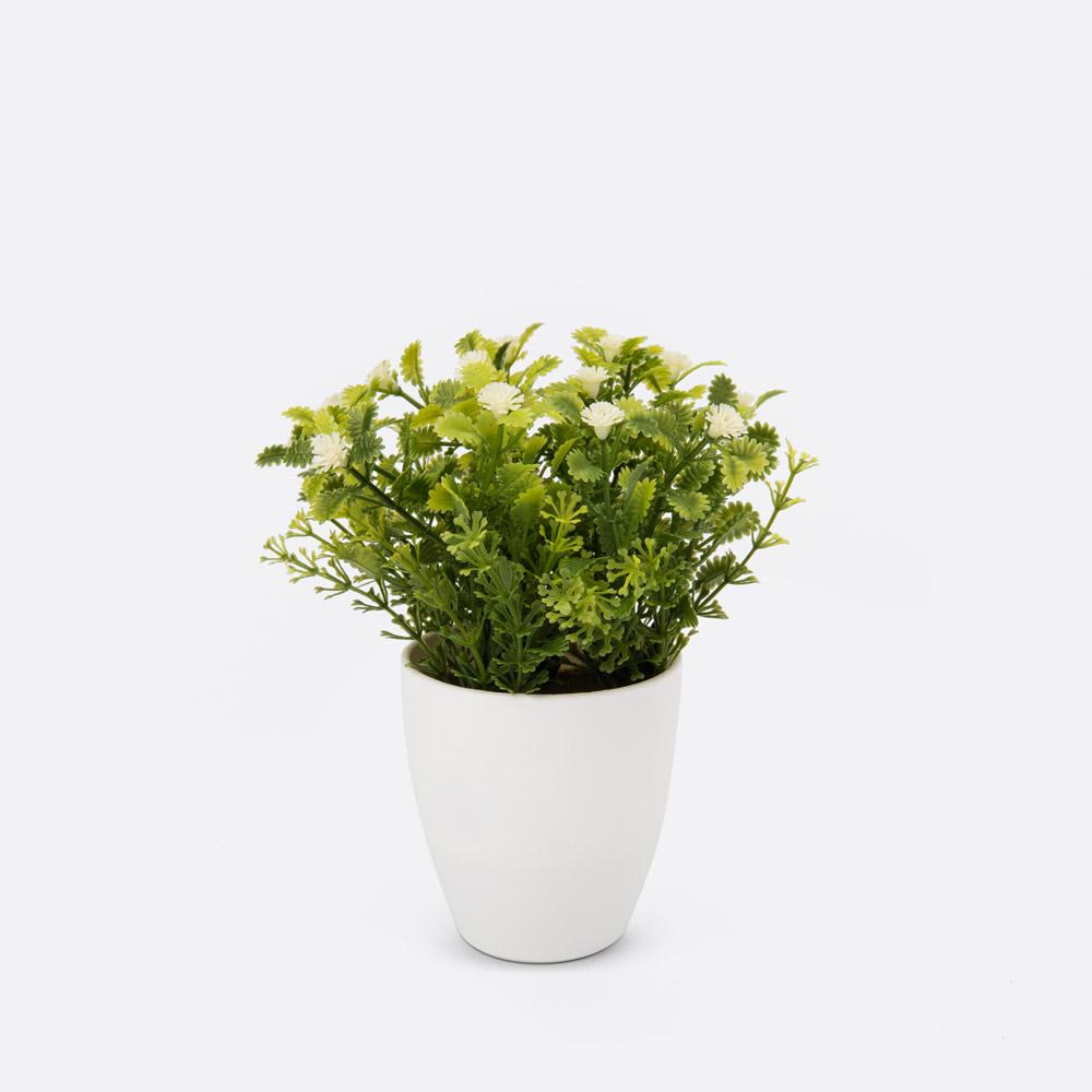 Planta artificial ARUANA